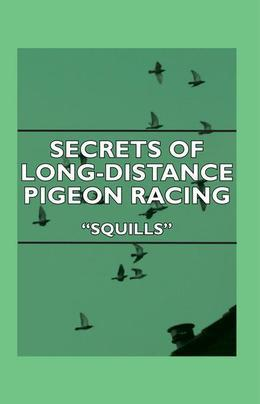 Secrets Of Long-Distance Pigeon Racing