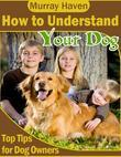 How to Understand Your Dog - Top Tips for Dog Owners