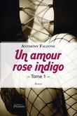 Un amour rose indigo tome 1