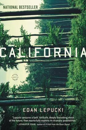 California: A Novel