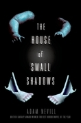 The House of Small Shadows