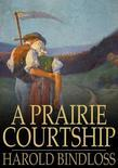 A Prairie Courtship: Or, Alison's Adventure