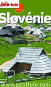 Slovénie 2014-2015 Petit Futé (avec cartes, photos + avis des lecteurs)