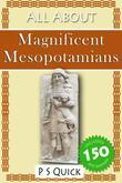 All about: Magnificent Mesopotamians