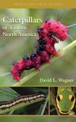 Caterpillars of Eastern North America: A Guide to Identification and Natural History: A Guide to Identification and Natural History