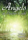 Angels at Pincher Creek
