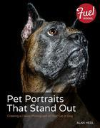 Pet Portraits That Stand Out: Creating a Classic Photograph of Your Cat or Dog
