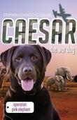 Caesar the War Dog 3: Operation Pink Elephant