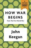How War Begins: from The First World War