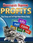 Domain Name Profits - Buy Cheap and Sell High Make Money Today