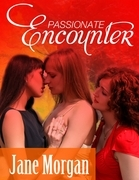 Passionate Encounter (Lesbian Erotica)