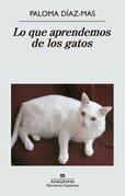 Lo que aprendemos de los gatos