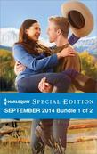 Harlequin Special Edition September 2014 - Bundle 1 of 2: Maverick for Hire\A Match Made by Baby\Once Upon a Bride
