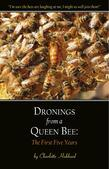 Dronings from a Queen Bee:  The First Five Years