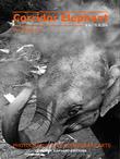 Corridor Elephant E MAGAZINE N 06