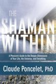 The Shaman Within: A Physicist's Guide to the Deeper Dimensions of Your Life, the Universe, and Everything