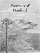 Promises of Pineford
