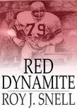 Red Dynamite: A Mystery Story for Boys