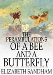The Perambulations of a Bee and a Butterfly: In Which Are Delineated Those Smaller Traits of Character Which Escape the Observation of Larger Spectato