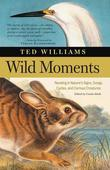 Wild Moments