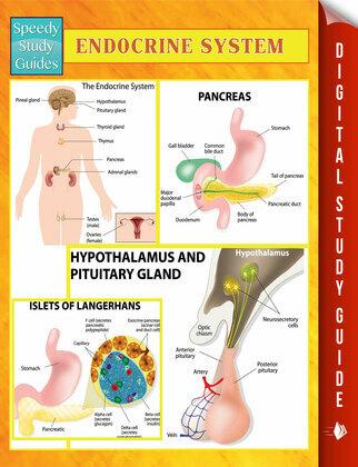 Endocrine System Speedy Study Guides