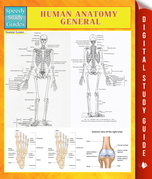 Human Anatomy General Speedy Study Guides