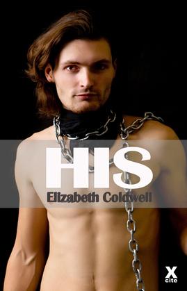 His: Gay erotic fiction