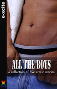 All the Boys: A Collection of Gay Erotic Stories
