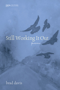 Still Working It Out: Poems