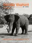 E-magazine Corridor Éléphant N°7