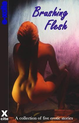 Brushing Flesh: A collection of five erotic stories
