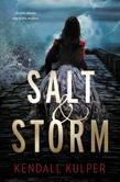 Salt & Storm - FREE PREVIEW (The First 11 Chapters)
