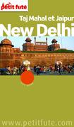 New Delhi 2015 Petit Futé (avec cartes, photos + avis des lecteurs)