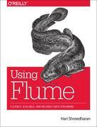 Using Flume: Flexible, Scalable, and Reliable Data Streaming
