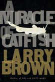 A Miracle of Catfish