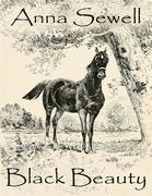 Anna Sewell - Black Beauty (Illustrated)