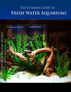 The Ultimate Guide to Freshwater Aquarium