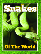 Snakes Of The World: From Pythons to Black Mamba
