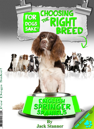 Choosing the Right Breed - English Springer Spaniels