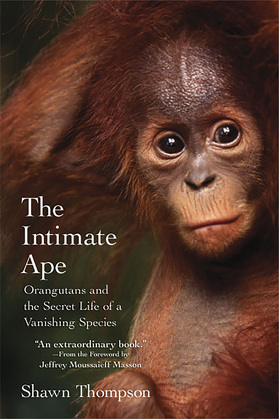 The Intimate Ape: