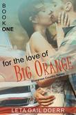 For the Love of Big Orange (The Bluegrass Country Series, Book 1)