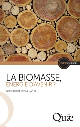 La biomasse, énergie d'avenir ?