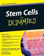 Stem Cells For Dummies