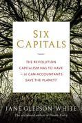 Six Capitals: The revolution capitalism has to have--or can accountants save the planet?