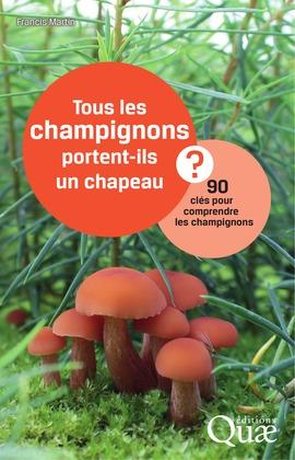 Tous les champignons portent-ils un chapeau ?