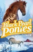 Black Pearl Ponies 2: Wildflower