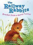 Bracken Finds a Secret Tunnel: The Railway Rabbits: Book Five