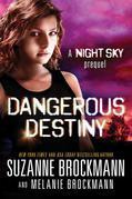 Dangerous Destiny: A Night Sky novella