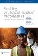 Simulating Distributional Impacts of Macro-dynamics: Theory and Practical Applications