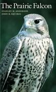 The Prairie Falcon